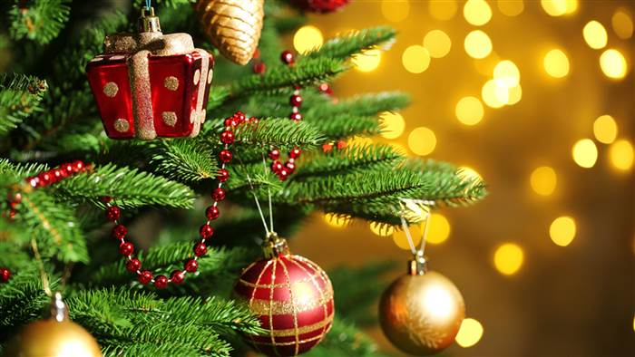 christmas-tree-today-tease-1-151201_dd6ec0167e769c87de32fd740c83f70a-today-inline-large